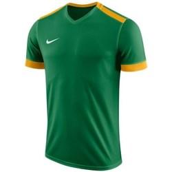 vaatteet Pojat Lyhythihainen t-paita Nike JR Dry Park Derby II Vihreät