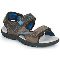 kengät Pojat Urheilusandaalit Geox JR SANDAL STRADA Brown / Blue