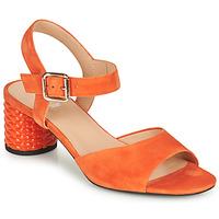 kengät Naiset Sandaalit ja avokkaat Geox D ORTENSIA MID SANDA Orange