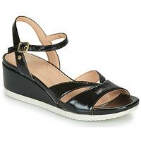 kengät Naiset Sandaalit ja avokkaat Geox D ISCHIA Black