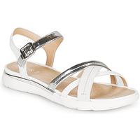kengät Naiset Sandaalit ja avokkaat Geox D SANDAL HIVER Hopea / White