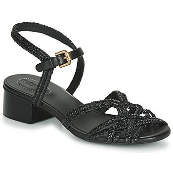 kengät Naiset Sandaalit ja avokkaat See by Chloé SB34161A Black