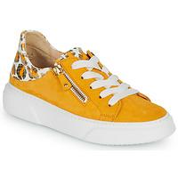 kengät Naiset Matalavartiset tennarit Gabor KURUKU Yellow