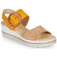 kengät Naiset Sandaalit ja avokkaat Gabor KOKREM Beige / Keltainen
