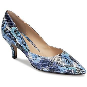 kengät Naiset Korkokengät Perlato MOLI Sininen