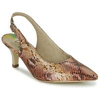 kengät Naiset Korkokengät Dorking MOON Brown