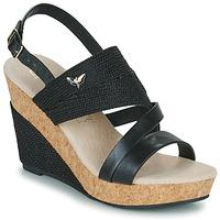 kengät Naiset Sandaalit ja avokkaat Les Petites Bombes MELINE Black