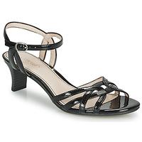 kengät Naiset Sandaalit ja avokkaat Esprit BIRKIN SANDAL Musta