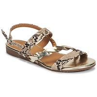 kengät Naiset Sandaalit ja avokkaat Moony Mood MELINDA Python
