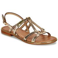 kengät Naiset Sandaalit ja avokkaat Les Tropéziennes par M Belarbi HACKLE Kulta
