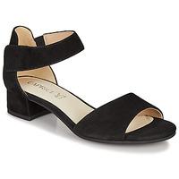 kengät Naiset Sandaalit ja avokkaat Caprice BESSINA Musta