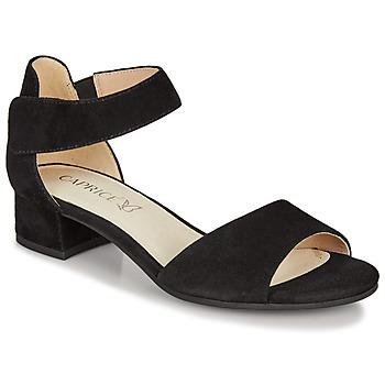 kengät Naiset Sandaalit ja avokkaat Caprice  Black
