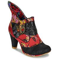 kengät Naiset Nilkkurit Irregular Choice MIAOW Red / Black