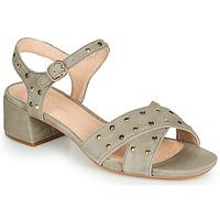 kengät Naiset Sandaalit ja avokkaat Clarks SHEER35 STRAP Taupe