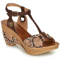 kengät Naiset Sandaalit ja avokkaat Chattawak JENNY Python