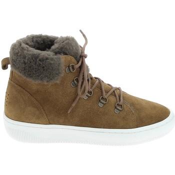 kengät Saappaat TBS Iceland Argile Harmaa