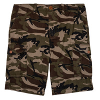 vaatteet Pojat Shortsit / Bermuda-shortsit Quiksilver CRUCIAL BATTLE Camo