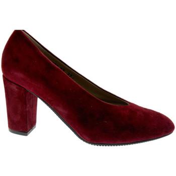 kengät Naiset Korkokengät Calzaturificio Loren LO60887bo nero