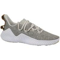 kengät Miehet Fitness / Training adidas Originals Alphabounce Trainer Valkoiset,Beesit