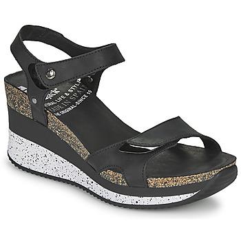 kengät Naiset Sandaalit ja avokkaat Panama Jack NICA Black