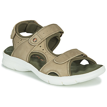 kengät Miehet Sandaalit ja avokkaat Panama Jack SALTON Vihreä