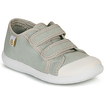 kengät Lapset Matalavartiset tennarit Citrouille et Compagnie GLASSIA Grey
