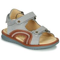 kengät Pojat Sandaalit ja avokkaat Citrouille et Compagnie MASTIKO Harmaa
