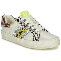 kengät Tytöt Matalavartiset tennarit Gioseppo TIRRENIA White / Yellow / Hopea