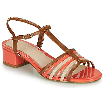 kengät Naiset Sandaalit ja avokkaat André PARISETTE Moniväri