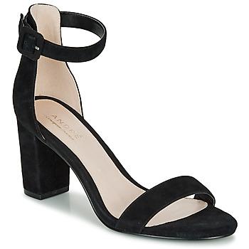 kengät Naiset Sandaalit ja avokkaat André BERTILLE Black