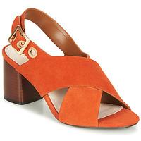 kengät Naiset Sandaalit ja avokkaat André JANNINE Orange