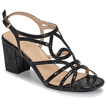 kengät Naiset Sandaalit ja avokkaat André JUDITH Black