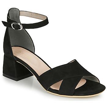 kengät Naiset Sandaalit ja avokkaat André JAYLA Black