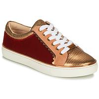kengät Naiset Matalavartiset tennarit André LA FUNAMBULE Bronze
