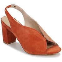 kengät Naiset Sandaalit ja avokkaat André L ILLUSIONISTE Vaaleanpunainen