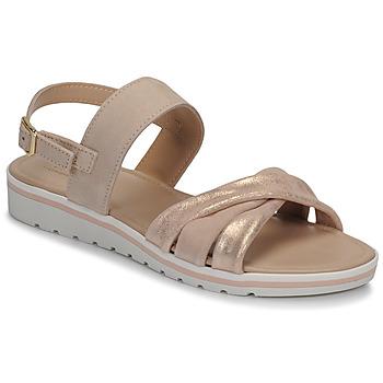 kengät Naiset Sandaalit ja avokkaat André POLINE Nude