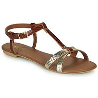 kengät Naiset Sandaalit ja avokkaat André RODHIE Camel