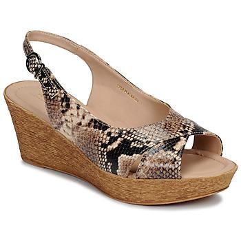 kengät Naiset Sandaalit ja avokkaat André DESTINEE Beige
