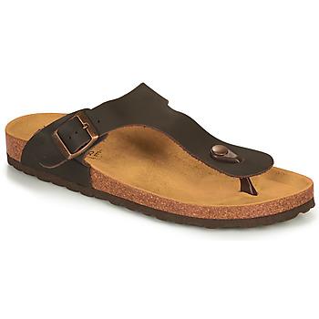kengät Miehet Sandaalit ja avokkaat André SPRINTCHO Brown