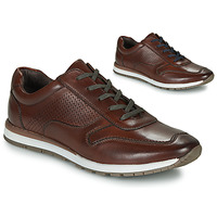 kengät Miehet Juoksukengät / Trail-kengät André SPORTCHIC Brown