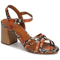 kengät Naiset Sandaalit ja avokkaat André BRYNN Orange