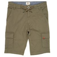 vaatteet Pojat Shortsit / Bermuda-shortsit Timberland TAO Green