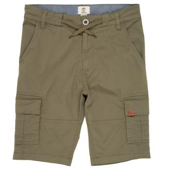 vaatteet Pojat Shortsit / Bermuda-shortsit Timberland TAO Vihreä