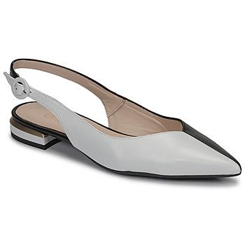 kengät Naiset Balleriinat Fericelli MANU Musta / Harmaa / Valkoinen