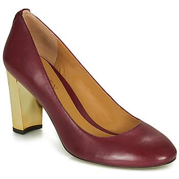 kengät Naiset Korkokengät Lauren Ralph Lauren 802688958-004 Bordeaux