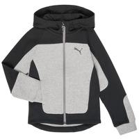 vaatteet Pojat Svetari Puma EVOST HOOD JKT Grey