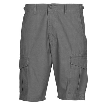 vaatteet Miehet Shortsit / Bermuda-shortsit Lee CARGO SHORT FATIGUE Harmaa