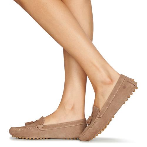 Casual Attitude Jalayale Taupe - Ilmainen Toimitus- Kengät Kävelykengät Naiset 71