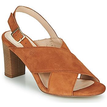kengät Naiset Sandaalit ja avokkaat Betty London MARIPOL Cognac