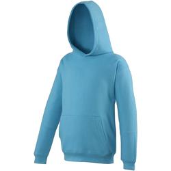 vaatteet Lapset Svetari Awdis JH01J Hawaiian Blue